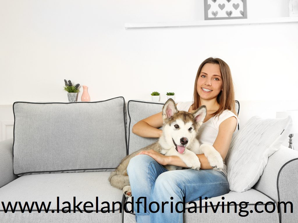 5 Selling Tips for your Home with Pets