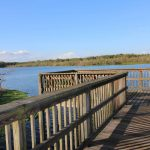 1122 Lake Shore Ranch Dr Seffner FL | Community Boardwalk